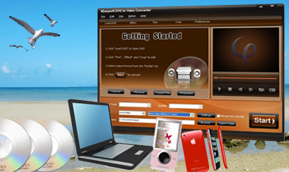 Tips for Choosing the Right Video and DVD Converter Dvd
