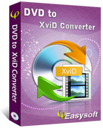 4Easysoft DVD to XviD Converter Box