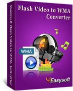 4Easysoft Flash Video to WMA Converter
