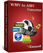 4Easysoft WMV to AMV  Converter