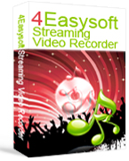 4Easysoft Streaming Video Recorder